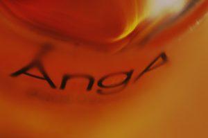 ANGA1.resized
