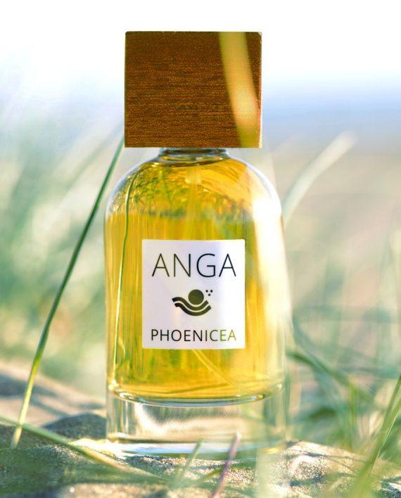 ANGA_CPNP